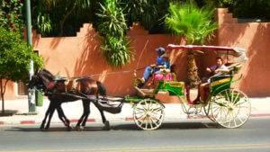 maroc desert maroc pas cher maroc voyage marrakech