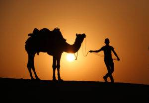 Ouarzazate Transfer